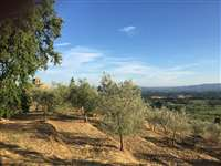 Great villa sale in tuscany