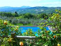 sale farm fiesole