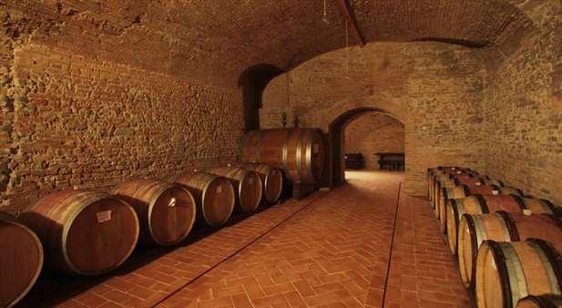 azienda vitivinicola di 300 ettari in vendita nel Chianti - Firenze