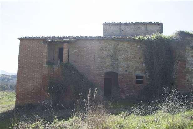 Vendita Azienda Agricola 543 Ettari Montalcino